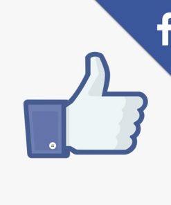 Facebook-Like-Gilla